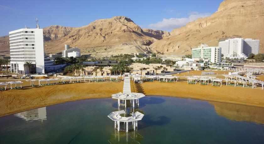 אורכידאה צל הרים ים המלח