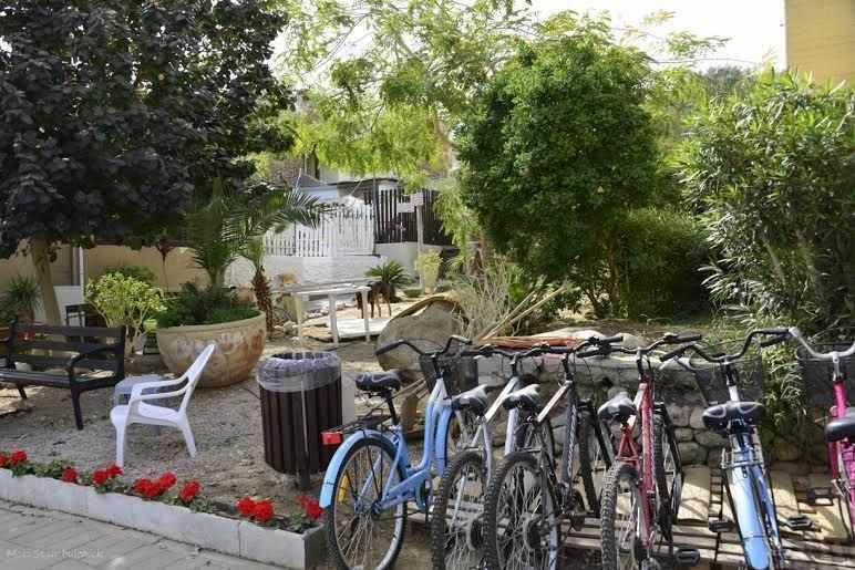 חדרי אירוח רוז השכרת אופניים
